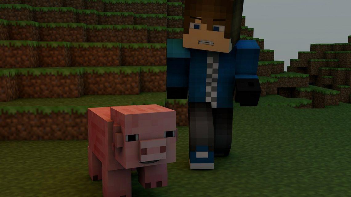 Geld verdienen met je eigen Minecraft server